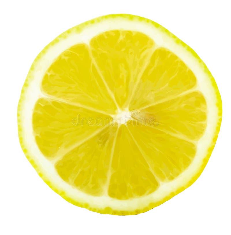 Κίτρινο διάνυσμα απεικόνισης φετών περικοπών εσπεριδοειδών λεμονιών στοκ φωτογραφία