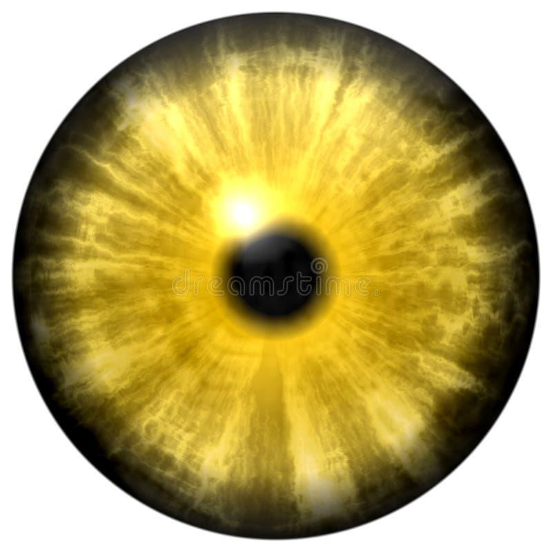 Κίτρινο ζωικό μάτι με το μικρό μαθητή και το μαύρο αμφιβληστροειδή Σκοτεινή ζωηρόχρωμη ίριδα γύρω από το μαθητή, λεπτομέρεια του  διανυσματική απεικόνιση