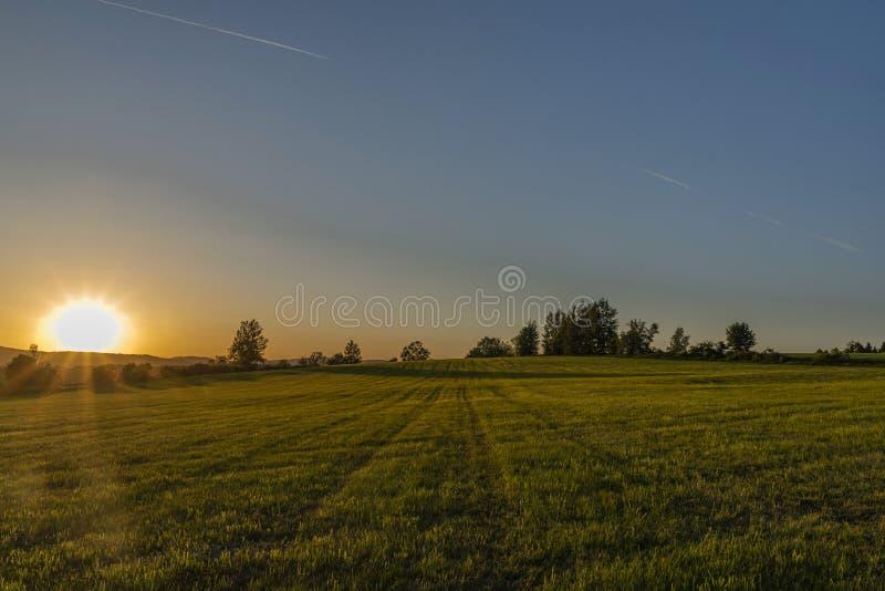 Κίτρινο ηλιοβασίλεμα στον πράσινο τομέα χλόης κοντά στο χωριό Roprachtice στοκ εικόνες