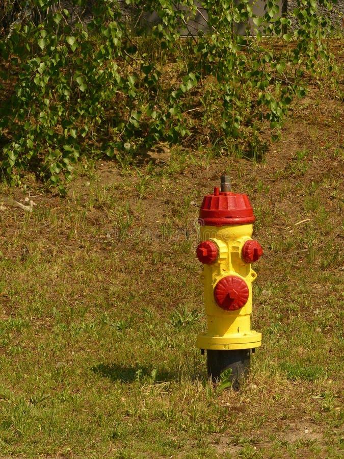 Κίτρινο και κόκκινο στόμιο υδροληψίας πυρκαγιάς στοκ φωτογραφία με δικαίωμα ελεύθερης χρήσης