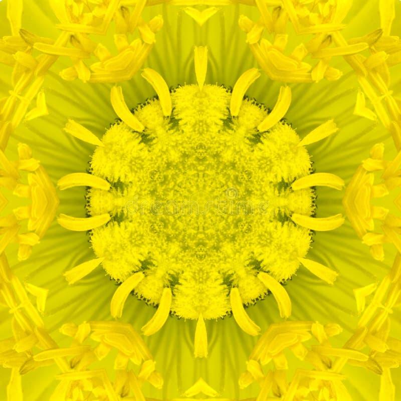 Κίτρινο ομόκεντρο κέντρο λουλουδιών. Kaleidoscopic σχέδιο Mandala στοκ φωτογραφία με δικαίωμα ελεύθερης χρήσης