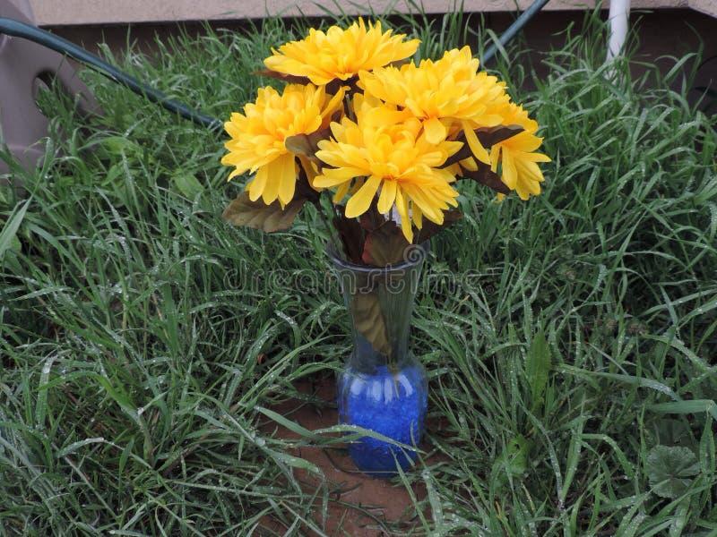 Κίτρινο λουλούδι Vase στοκ εικόνες