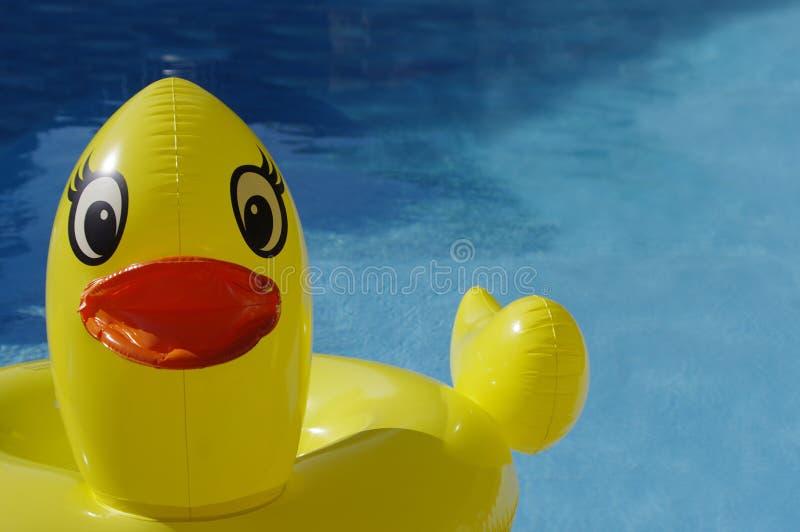Κίτρινο παιχνίδι Ducky στοκ εικόνες