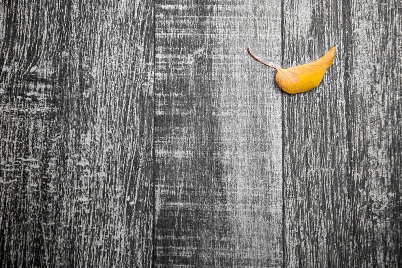 Κίτρινο φύλλο φθινοπώρου στο αποκορεσμένο ξύλινο σκαλοπάτι στοκ φωτογραφία με δικαίωμα ελεύθερης χρήσης