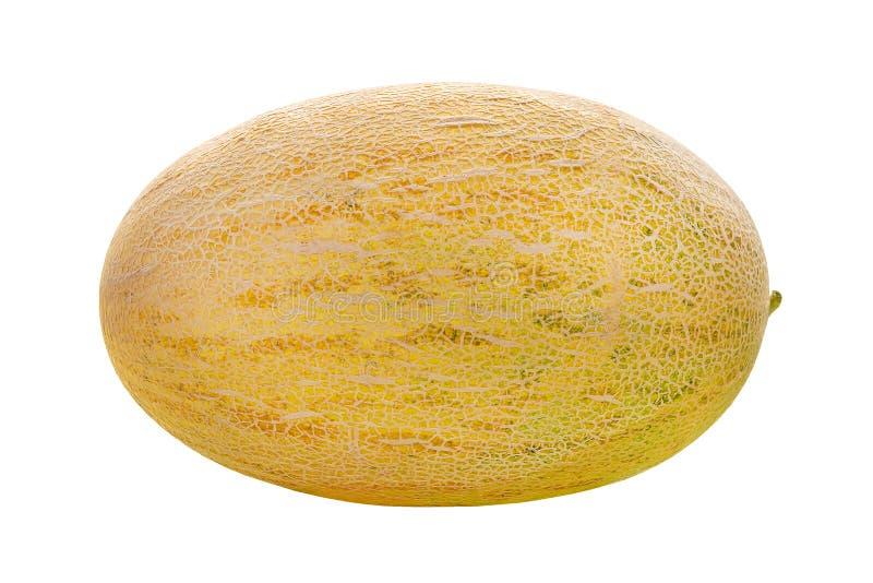 Κίτρινο ώριμο πεπόνι που απομονώνεται στο άσπρο υπόβαθρο στοκ εικόνες