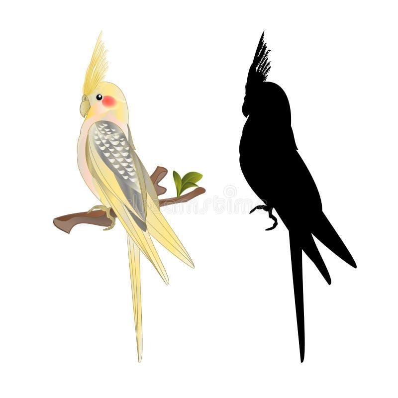 Κίτρινο cockatiel χαριτωμένο τροπικό ύφος watercolor παπαγάλων πουλιών αστείο σε μια άσπρη εκλεκτής ποιότητας διανυσματική απεικό διανυσματική απεικόνιση