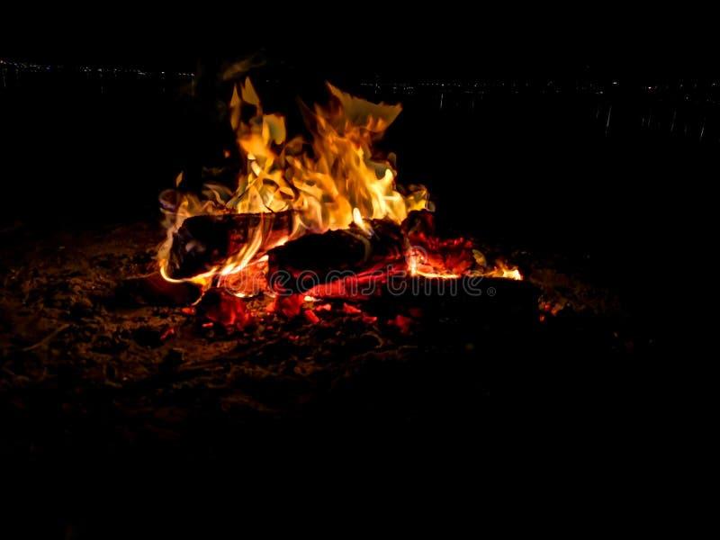 Καίγοντας ξύλο πυρκαγιάς στρατόπεδων στην άμμο στη νύχτα στοκ εικόνα με δικαίωμα ελεύθερης χρήσης