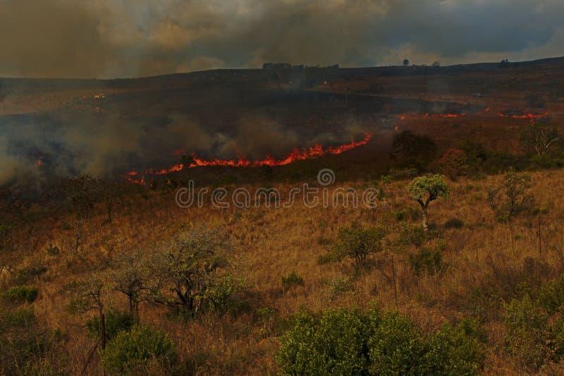 Καίγοντας τομείς στους λόφους της ανατολικής Νότιας Αφρικής στοκ φωτογραφίες με δικαίωμα ελεύθερης χρήσης