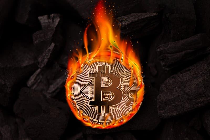 Καίγοντας χρυσό νόμισμα bitcoin στοκ φωτογραφίες