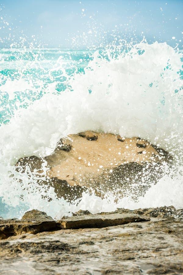 Καβούρια που προσκολλώνται σε έναν βράχο ως συντριβές βαριές κυμάτων στοκ εικόνα με δικαίωμα ελεύθερης χρήσης
