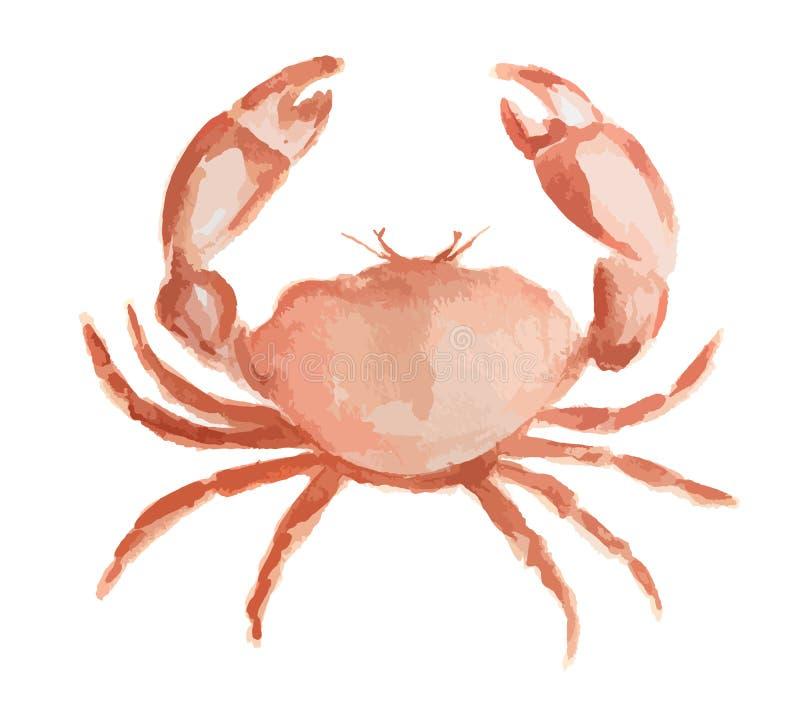 Καβούρι Watercolor απεικόνιση αποθεμάτων