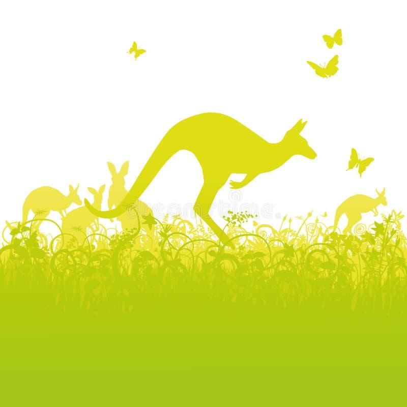 Καγκουρό άλματος στην Αυστραλία απεικόνιση αποθεμάτων