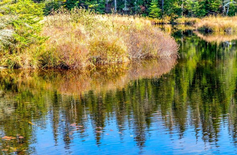 Καθαρά λίμνες και δάση στο πάρκο Mauricie στοκ φωτογραφίες