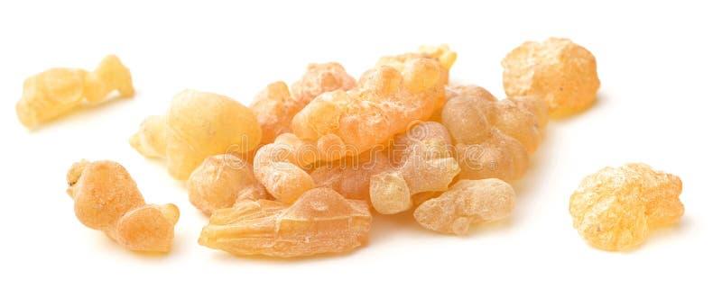 Καθαρή οργανική Frankincense ρητίνη που απομονώνεται στο λευκό στοκ εικόνες