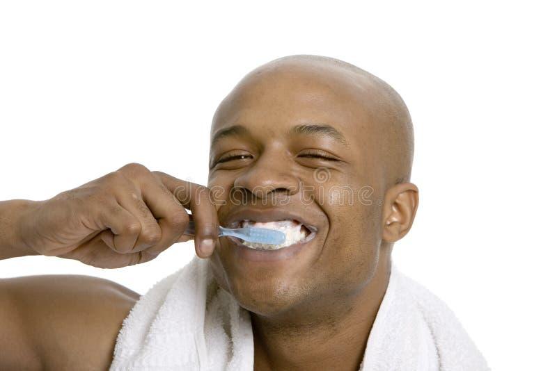 Καθαρίζοντας δόντια στοκ εικόνες με δικαίωμα ελεύθερης χρήσης