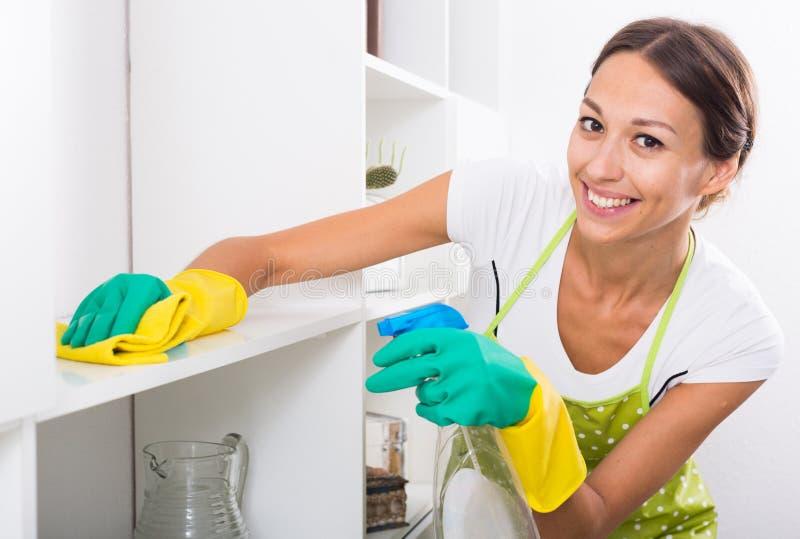 Καθαρίζοντας σπίτι γυναικών στοκ εικόνες