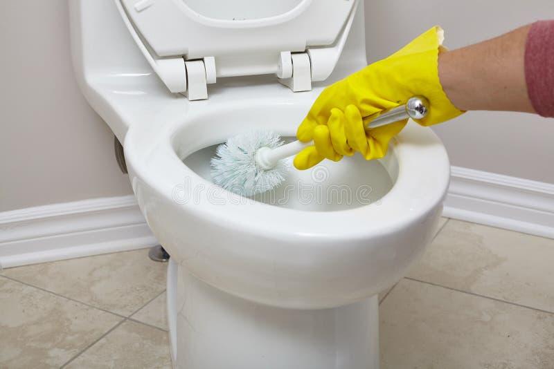 Καθαρισμός κύπελλων τουαλετών στοκ εικόνα με δικαίωμα ελεύθερης χρήσης
