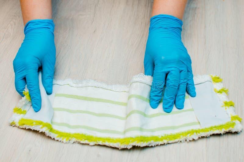 Καθαρισμός στο διαμέρισμα Το θηλυκό παραδίδει τα μπλε λαστιχένια γάντια Τ στοκ εικόνες με δικαίωμα ελεύθερης χρήσης