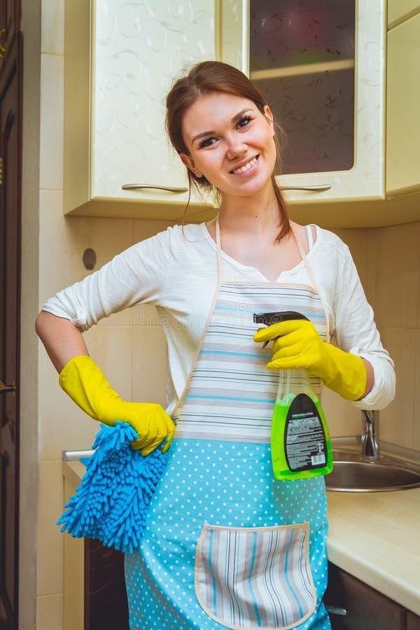 Καθαρισμός της έννοιας κουζινών στοκ φωτογραφίες με δικαίωμα ελεύθερης χρήσης