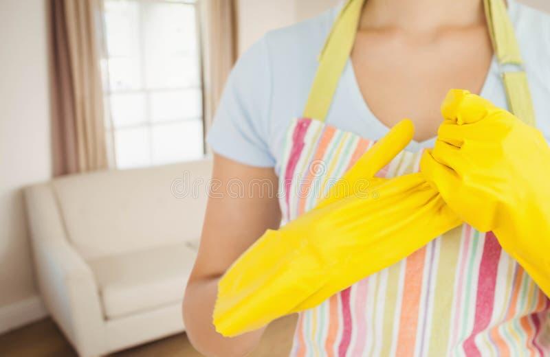 Καθαριστής στο σπίτι στοκ φωτογραφίες με δικαίωμα ελεύθερης χρήσης