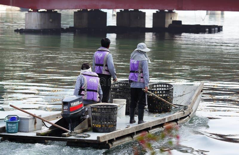 Καθαρότερη στάση ποταμών σε μια βάρκα στοκ εικόνες