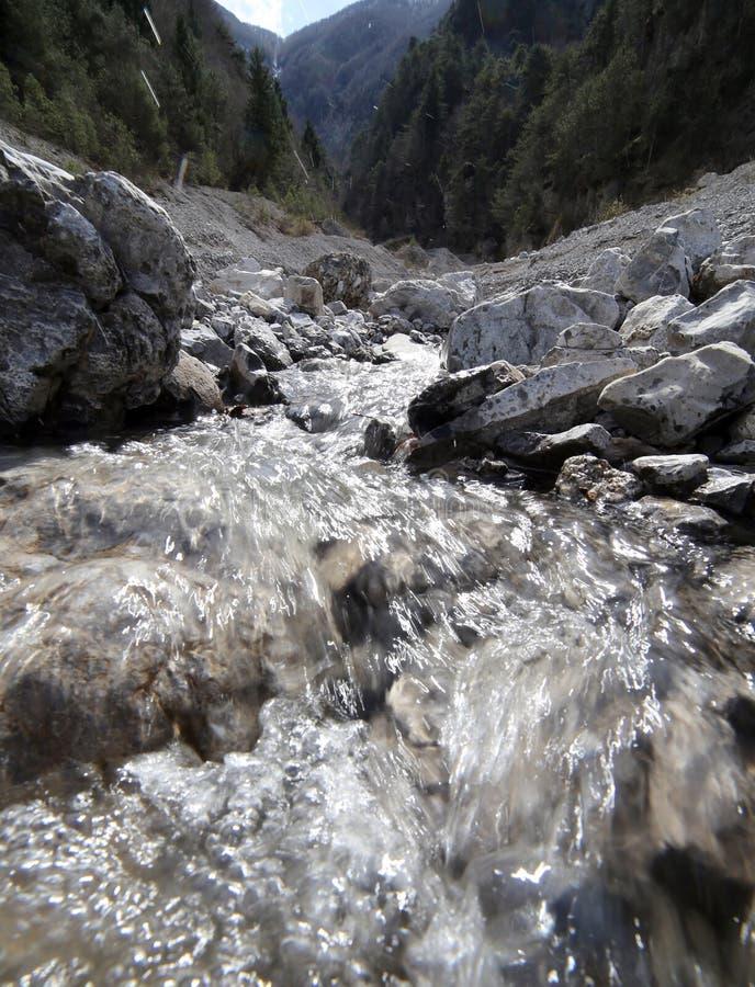 Καθαρό γλυκό νερό στο ρυάκι βουνών στοκ εικόνες