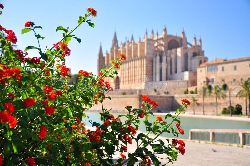 Καθεδρικός ναός Λα Seu της Πάλμα ντε Μαγιόρκα με την επίδραση bokeh με το κόκκινο πορτοκαλί λουλούδι Lantana στο μέτωπο Αυτό το κ στοκ φωτογραφία με δικαίωμα ελεύθερης χρήσης