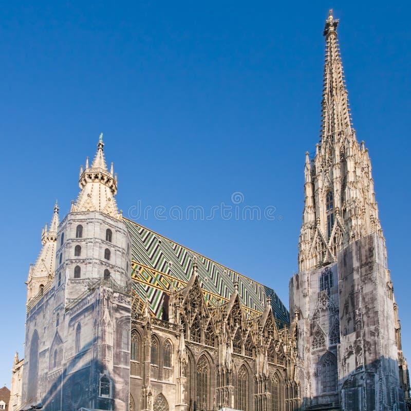 καθεδρικός ναός ST Stephan Βιέννη τ& στοκ φωτογραφία με δικαίωμα ελεύθερης χρήσης