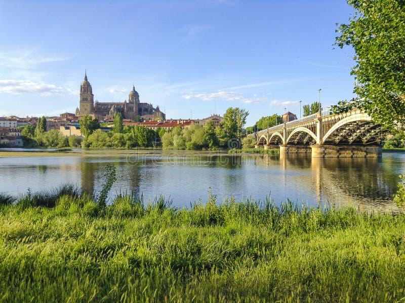 Καθεδρικός ναός και ποταμός Σαλαμάνκας στοκ φωτογραφίες