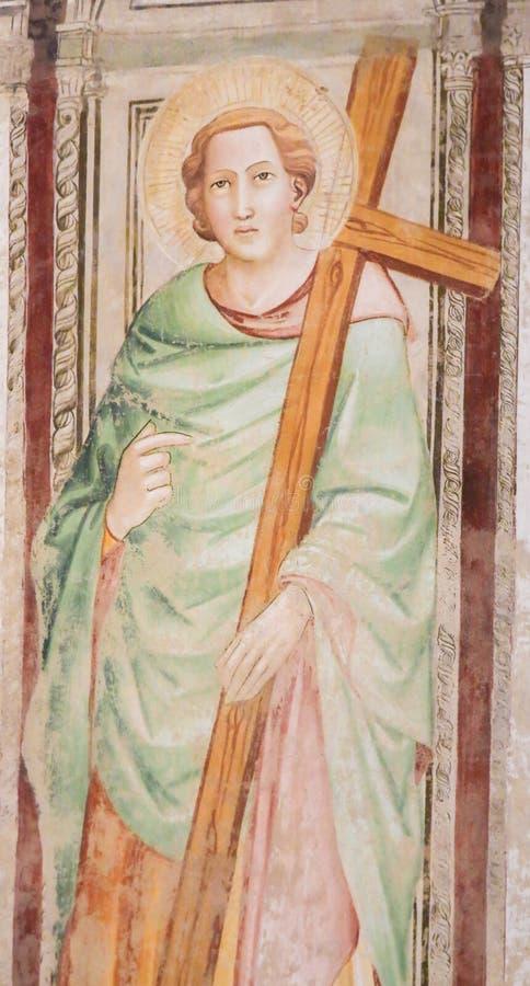 Καθολικός Άγιος που φέρνει έναν σταυρό - νωπογραφία σε Santa Croce, Φλωρεντία στοκ φωτογραφία