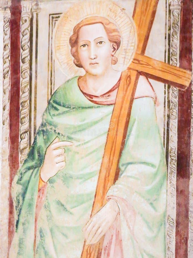 Καθολικός Άγιος που φέρνει έναν σταυρό - νωπογραφία σε Santa Croce, Φλωρεντία στοκ εικόνες