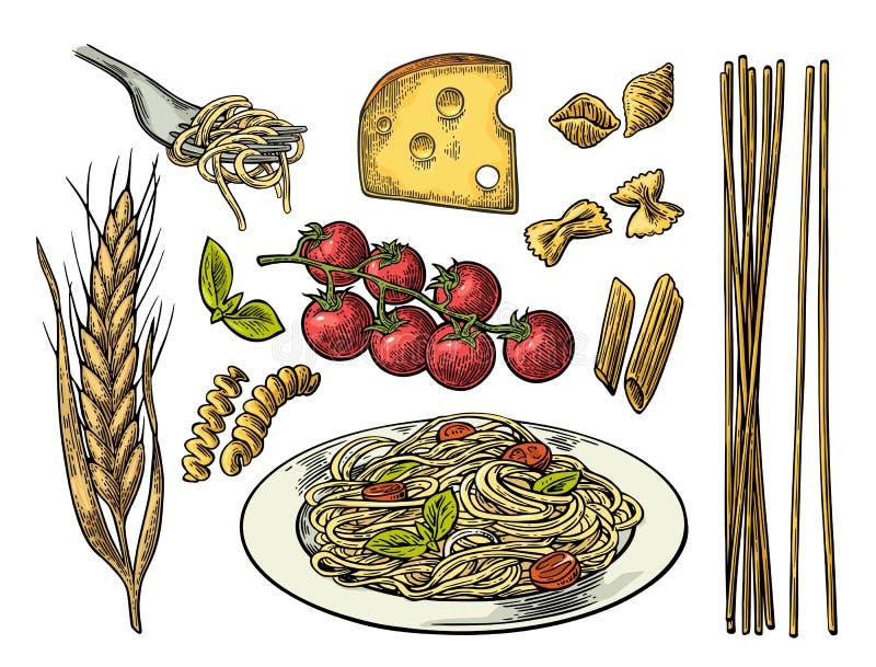 Καθορισμένα ζυμαρικά με τον κλάδο ντοματών, τυρί, αυτί του σίτου διανυσματική απεικόνιση