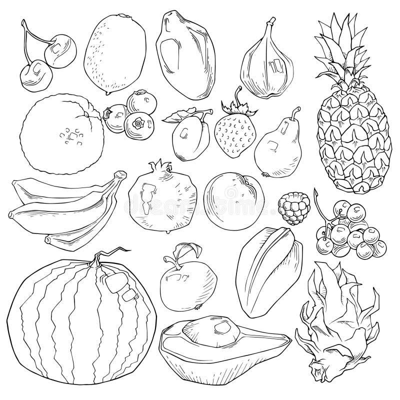 Καθορισμένα συρμένα χέρι φρούτα και εικονίδια μούρων καθορισμένα Αγροτικό προϊόν συλλογής στο διακοσμητικό αναδρομικό ύφος σκίτσω διανυσματική απεικόνιση