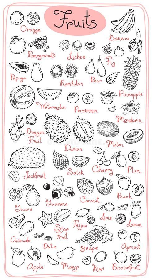 Καθορισμένα σχέδια των φρούτων για το προϊόν επιλογών, συνταγών και συσκευασιών σχεδίου επίσης corel σύρετε το διάνυσμα απεικόνισ διανυσματική απεικόνιση