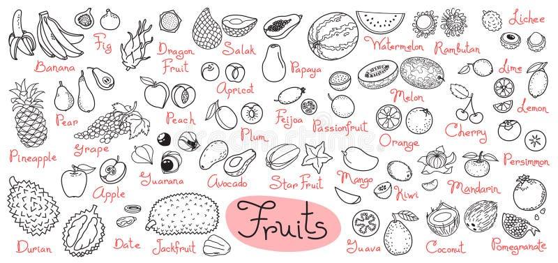 Καθορισμένα σχέδια των φρούτων για το προϊόν επιλογών, συνταγών και συσκευασιών σχεδίου επίσης corel σύρετε το διάνυσμα απεικόνισ ελεύθερη απεικόνιση δικαιώματος