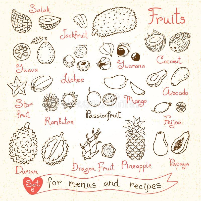 Καθορισμένα σχέδια των φρούτων για τις επιλογές σχεδίου, συνταγές διανυσματική απεικόνιση