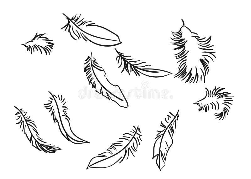 Καθορισμένη απομονωμένη διάνυσμα doodle γραμμή σκίτσων φτερών διανυσματική απεικόνιση