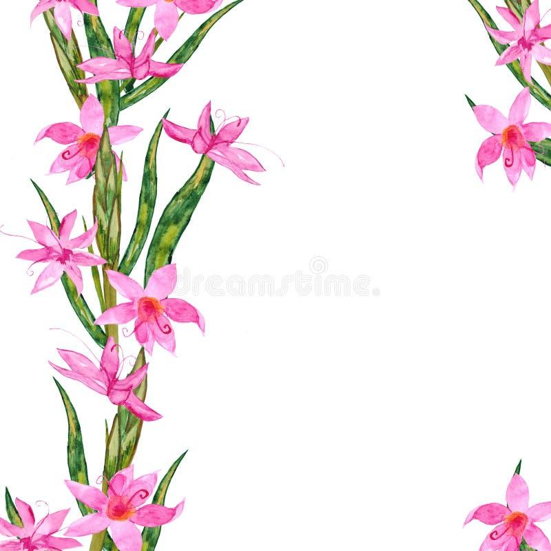 Καθορισμένη όμορφη συρμένη χέρι απεικόνιση διακοσμήσεων χαιρετισμού Watercolor ζωηρόχρωμη floral για το αρχικό σχέδιο των προσκλή ελεύθερη απεικόνιση δικαιώματος
