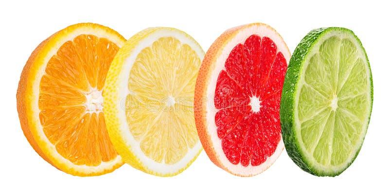 Καθορισμένο πορτοκάλι εσπεριδοειδούς, γκρέιπφρουτ, ασβέστης, λεμόνι που απομονώνεται στο λευκό στοκ φωτογραφίες