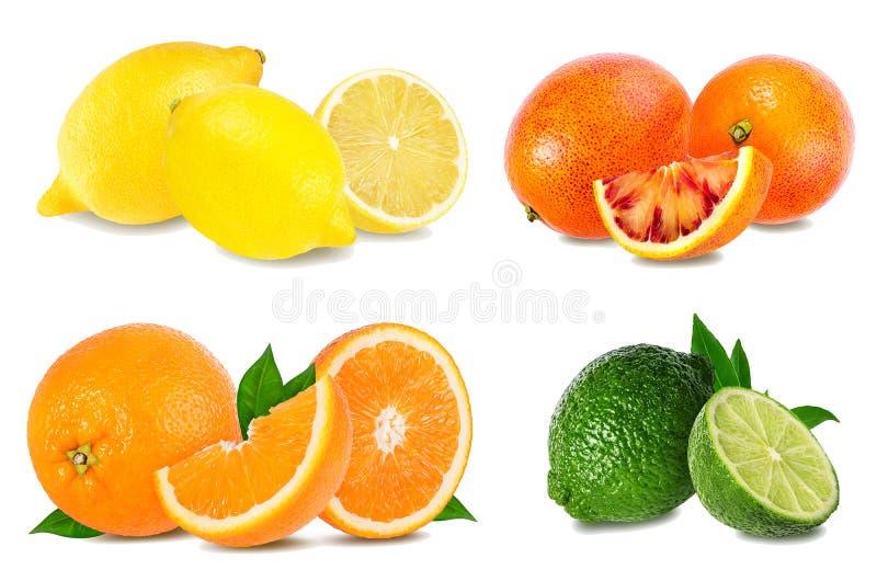 Καθορισμένο πορτοκάλι εσπεριδοειδούς, γκρέιπφρουτ, ασβέστης, λεμόνι που απομονώνεται στο λευκό στοκ φωτογραφία με δικαίωμα ελεύθερης χρήσης