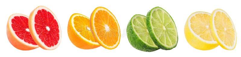 Καθορισμένο πορτοκάλι εσπεριδοειδούς, γκρέιπφρουτ, ασβέστης, λεμόνι που απομονώνεται στο λευκό στοκ εικόνα