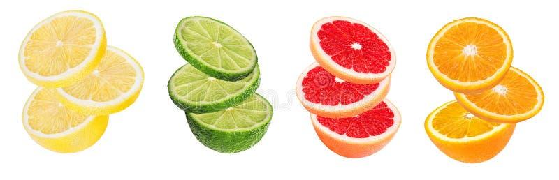 Καθορισμένο πορτοκάλι εσπεριδοειδούς, γκρέιπφρουτ, ασβέστης, λεμόνι που απομονώνεται στο λευκό στοκ εικόνες