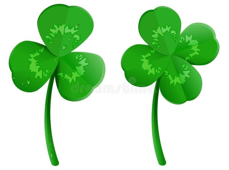 Καθορισμένο πράσινο φύλλο τριφυλλιού τριφυλλιών με τις πτώσεις δροσιάς Τυχερό σύμβολο τεσσάρων φύλλων του ST Πάτρικ Day διανυσματική απεικόνιση
