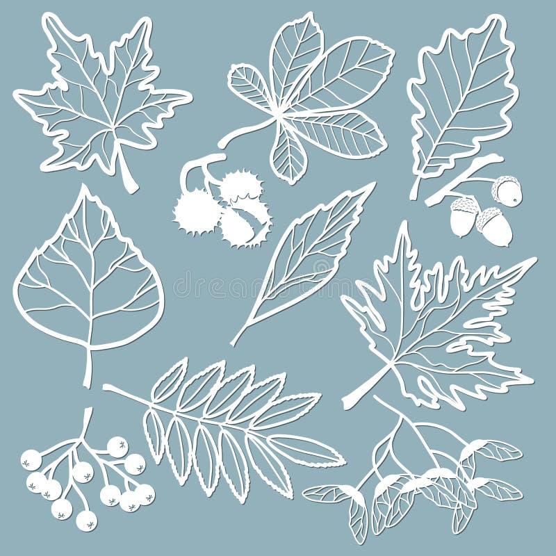 Καθορισμένο πρότυπο για την κοπή και το σχεδιαστή λέιζερ Βαλανιδιά, σφένδαμνος, Rowan, κάστανο, μούρα, βελανίδι, σπόροι, σημύδα,  διανυσματική απεικόνιση