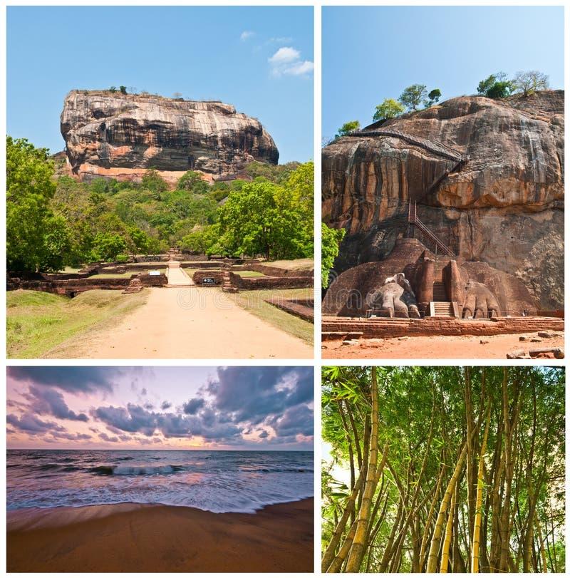 καθορισμένο sri lanka περιβάλλοντος στοκ φωτογραφία με δικαίωμα ελεύθερης χρήσης