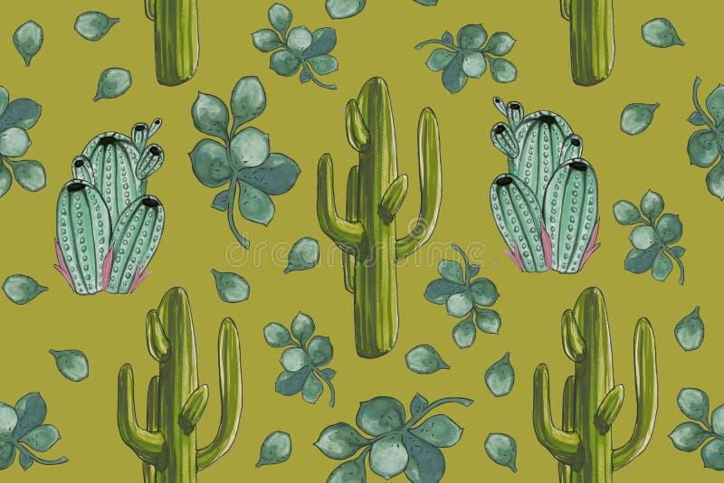 Καθορισμένο ` Watercolor άνευ ραφής σχέδιο κάκτων ερήμων με το πράσινο υπόβαθρο Crassula ` διανυσματική απεικόνιση