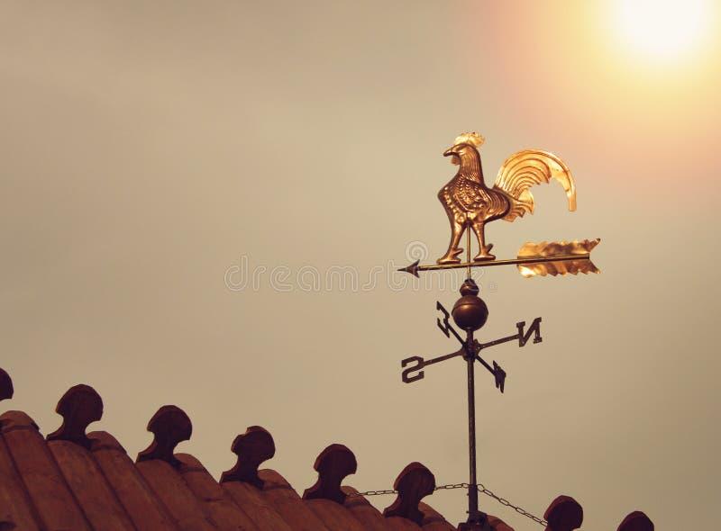 Καιρικό vane κοκκόρων στο ηλιοβασίλεμα στοκ εικόνες