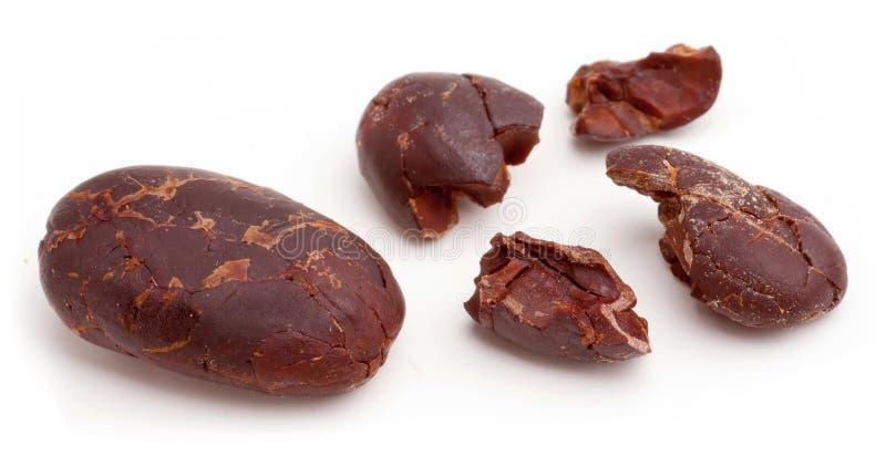 Download κακάο φασολιών στοκ εικόνα. εικόνα από σοκολάτα, θρεπτικός - 22789861