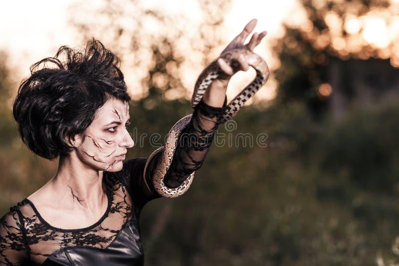 Κακή γυναίκα μαγισσών στοκ εικόνα με δικαίωμα ελεύθερης χρήσης
