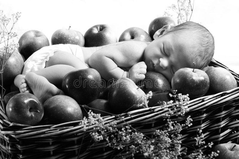 καλάθι μήλων νεογέννητο στοκ εικόνες